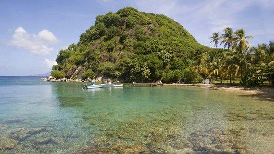 Guadeloupe: Plage du Pain de Sucre, plus belle plage des Saintes, surtout quand vous êtes le seul à y être :