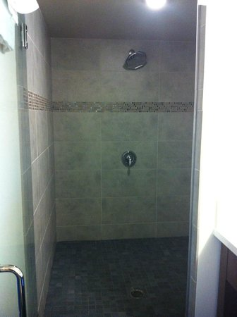 Vive Hotel Waikiki: Amazing WALK-IN shower!!!