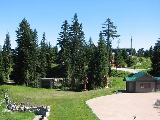 Grouse Mountain At The Summit In Summer
