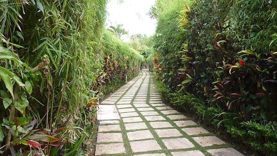 Emerald Villas: camino a la villa