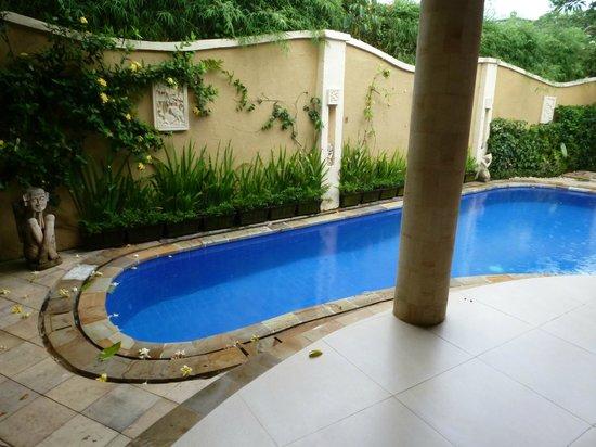 Emerald Villas: piscina