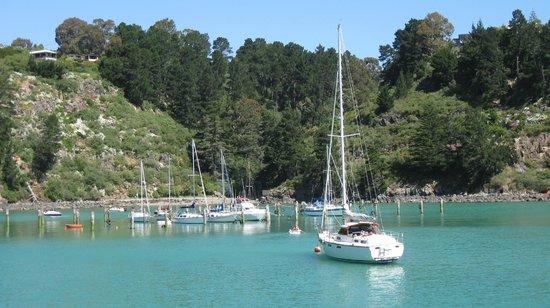 The moorings Diamond Harbour