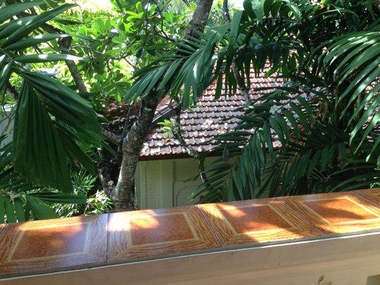 Puri Santrian: balcony view 1