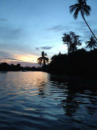 Half Day Klias Wetland River Cruise: Klias wet land sunset
