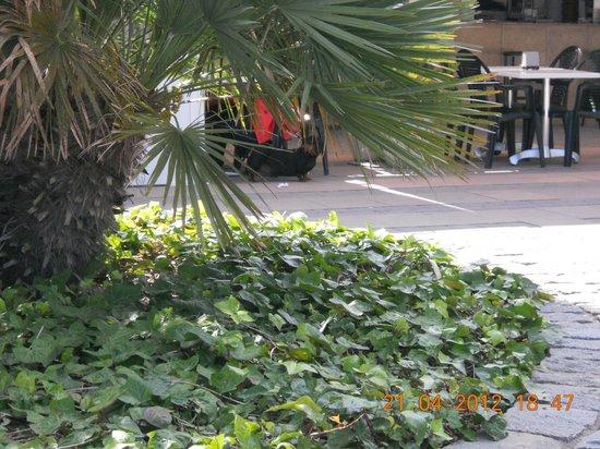 Avenida Jaume I: площадь