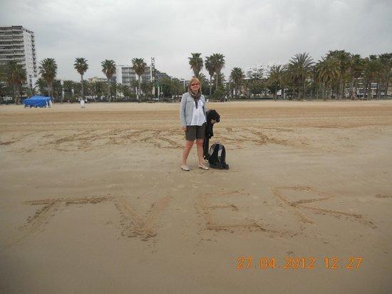 Avenida Jaume I : пляжная программа в апреле