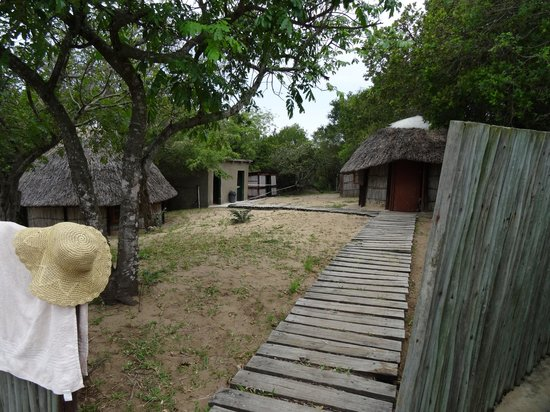 Extreme Nature Tours and Travel Day Tours: The Camp in Maputoland