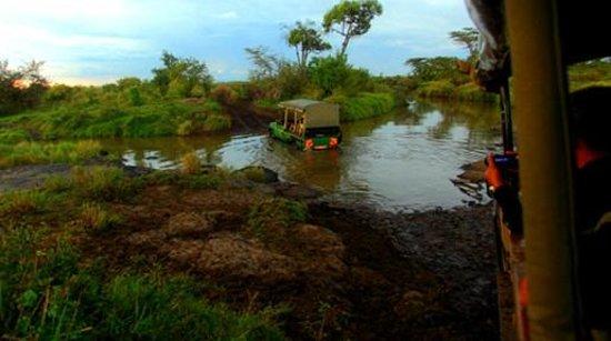 Olare Mara Kempinski Masai Mara: Negotiating the wild in Land Cruisers...