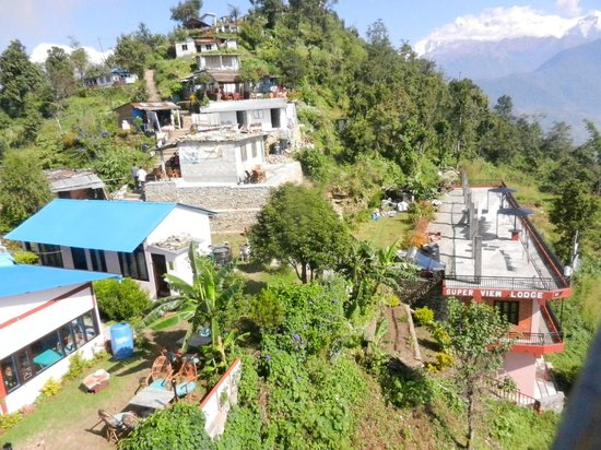 Super View Lodge and Restaurant : hotel and garden