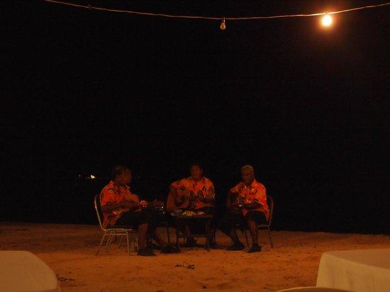 First Landing Beach Resort & Villas: First Landing String Band!