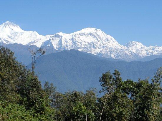 Super View Lodge and Restaurant : lamjung himal