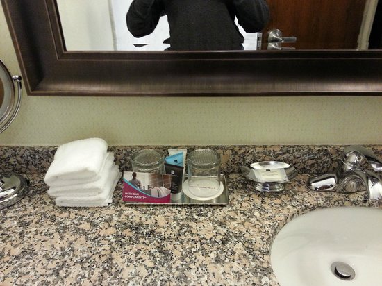 Crowne Plaza Lansing West: Sink and products