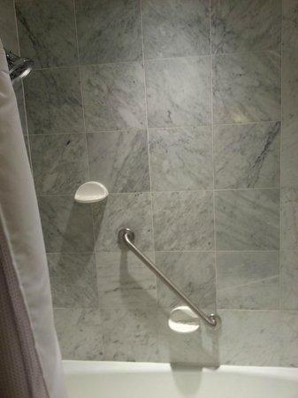 Crowne Plaza Lansing West: Great shower!