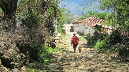 Camino Real: cammino real
