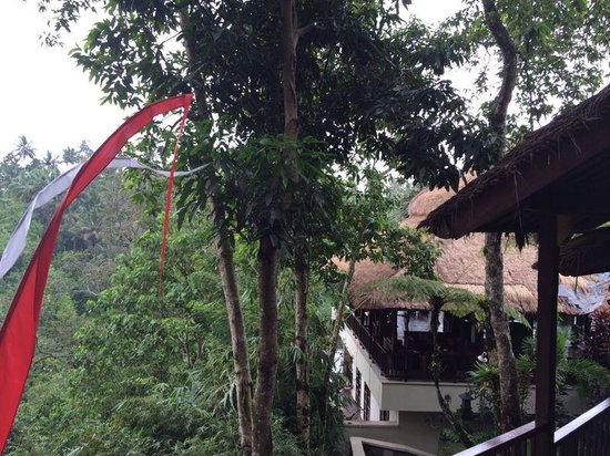 Natura Resort and Spa: Restaurant hanging in the jungle! Fantastic view!
