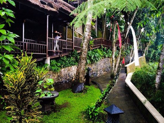 Natura Resort and Spa: Wood bridge from restaurant to the villas. Just amazing concept