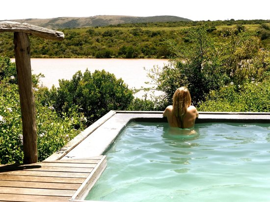 Pumba Private Game Reserve : Zimmer Pool