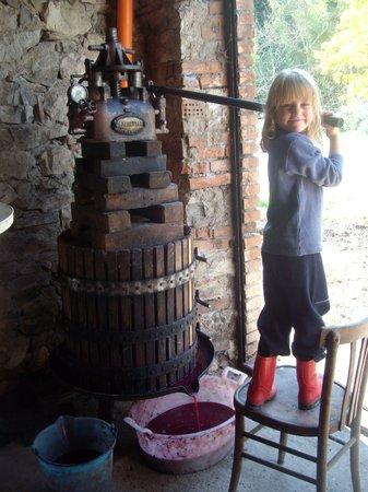 Agriturismo Podere Tegline : Pressing grapes.