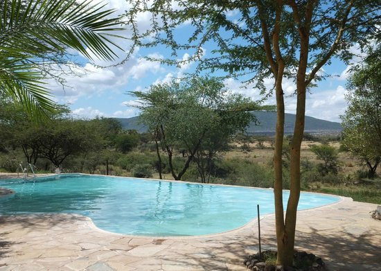‪‪Buffalo Springs Game Reserve‬, كينيا: Samburu pool‬