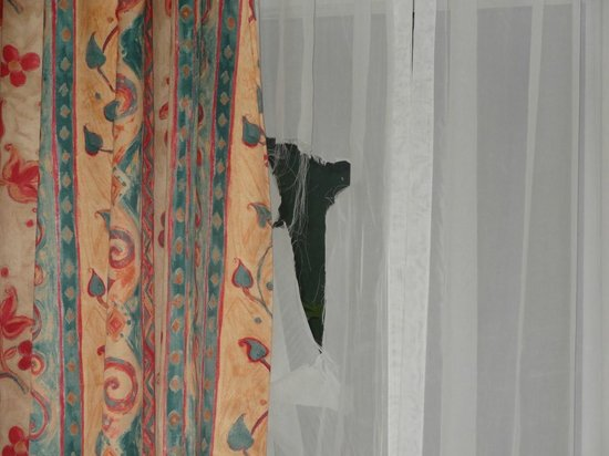 Galway Forest Lodge: Torn curtain