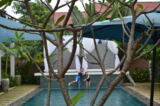 Mulberry Boutique Hotel : Love the pool!