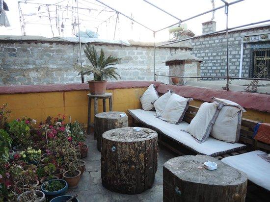 House Of Shambhala: Terraza