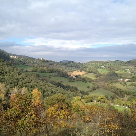 Agriturismo La Fonte: View from the actual spring that give La Fonte its name