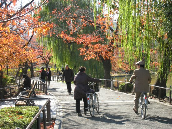 Travel Guides For Tokyo