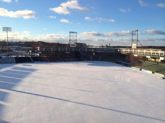 Hilton Garden Inn Manchester Downtown: Snow on the ball field, from room 419