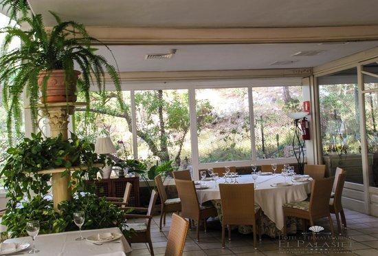 Restaurante El Palasiet: Flora y fauna abundan en el restaurante Palasiet