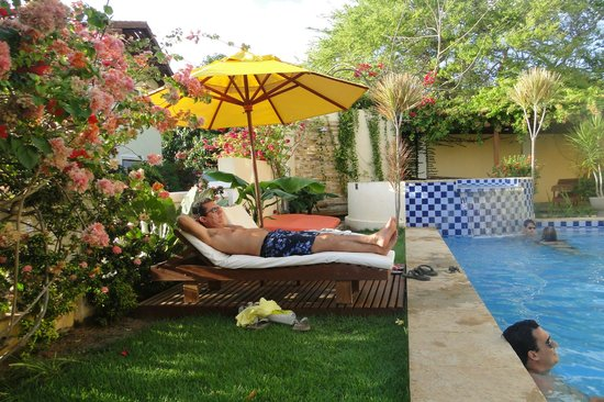 Hotel Villa Terra Viva: Piscina e jacuzzi (ao fundo)