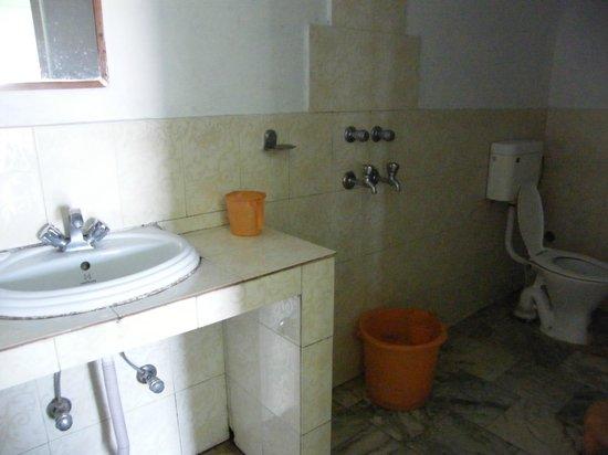 Hotel Uttarakhand Kausani: Shower room