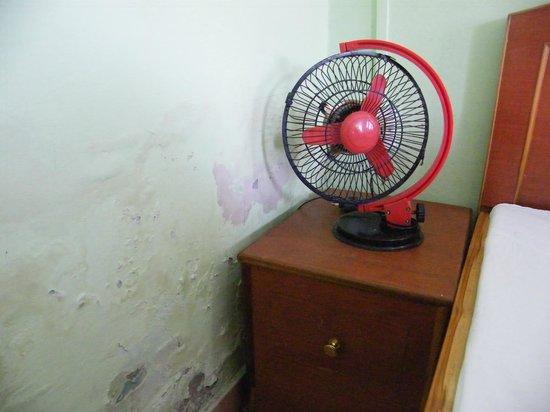Hotel Uttarakhand Kausani: Fan in Room
