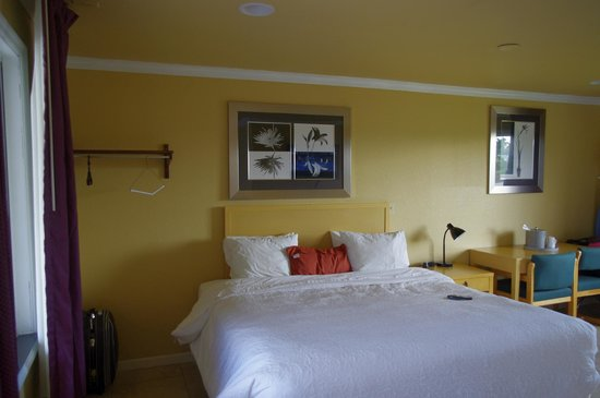 Everglades City Motel: très grand lit