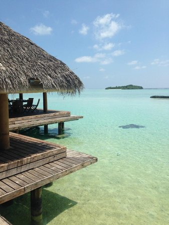 Rihiveli by Castaway Hotels & Escapes: view from dinning place