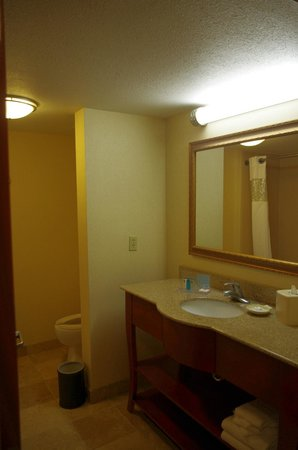 Hampton Inn & Suites Fort Myers - Colonial Blvd: Salle de bain
