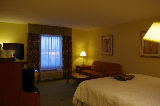 Hampton Inn & Suites Fort Myers - Colonial Blvd: Chambre