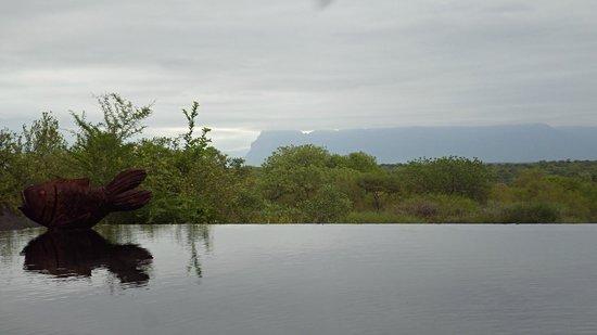 Khaya Ndlovu Manor House : Pool