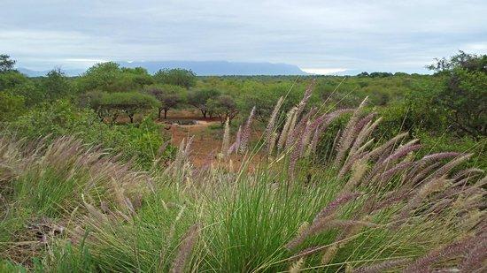Khaya Ndlovu Manor House : Escarpment View