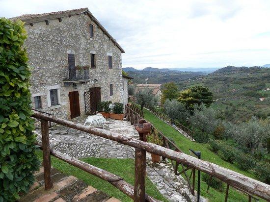 Agriturismo Colle Cesoni: Panoramica degli alloggi