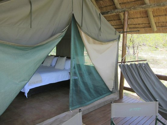 Sausage Tree Safari Camp: Glamping in style in the African bush