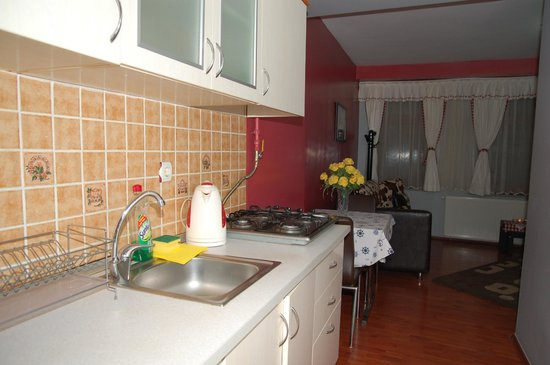 Ulas Suites & Apartments Sultanahmet: One Bedroom Apartment, Kitchenette