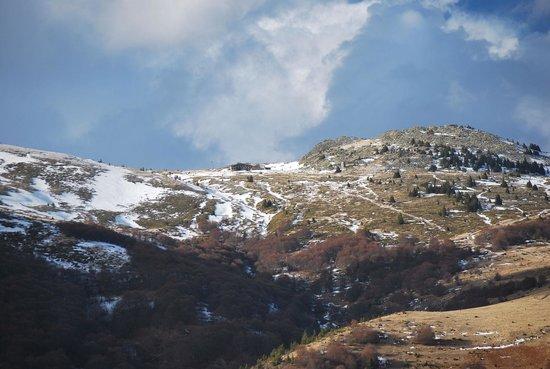 Vitosha Mountain: Kupena