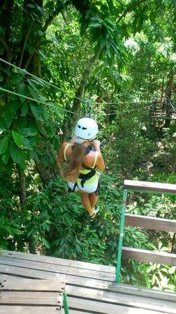 Rainforest Adventures Jamaica: zip line