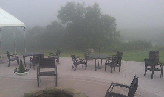 Fence Stile Vineyards & Winery: Morning Fog