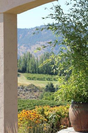 Benson Vineyards Estate Winery : Bensons Winery