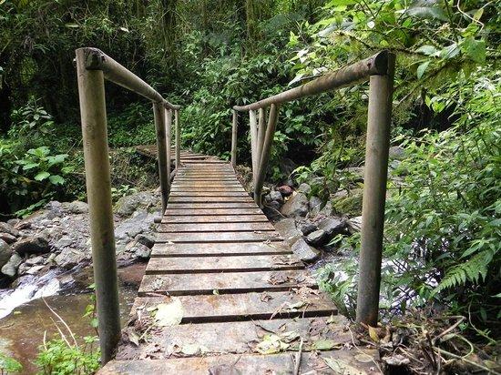 Parque Regional Natural Ucumari 사진