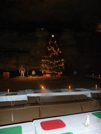 Cumberland Caverns: Huge Christmas tree displayed in the cave