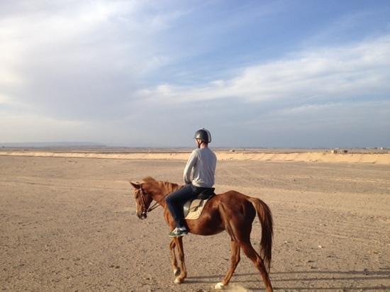 Horse Riding Hurghada: schitterende woestijn