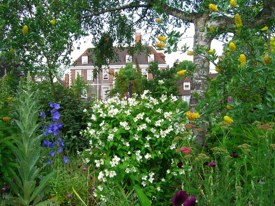 The Salutation Gardens: The flowers